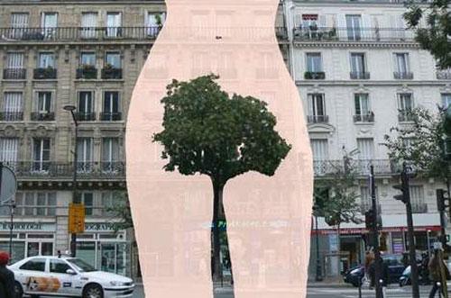 Tree-Bush.