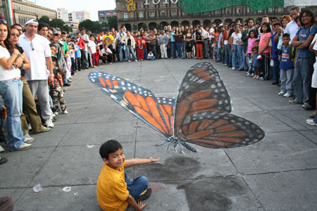 Giant Chalk illustration of a butterfly.